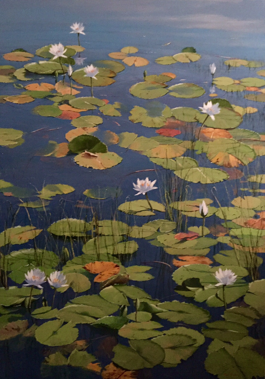 Water_Lillies_3.jpg